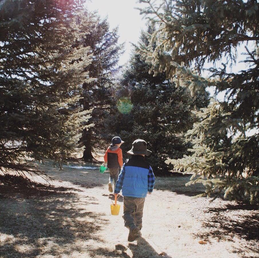 nature walk with children