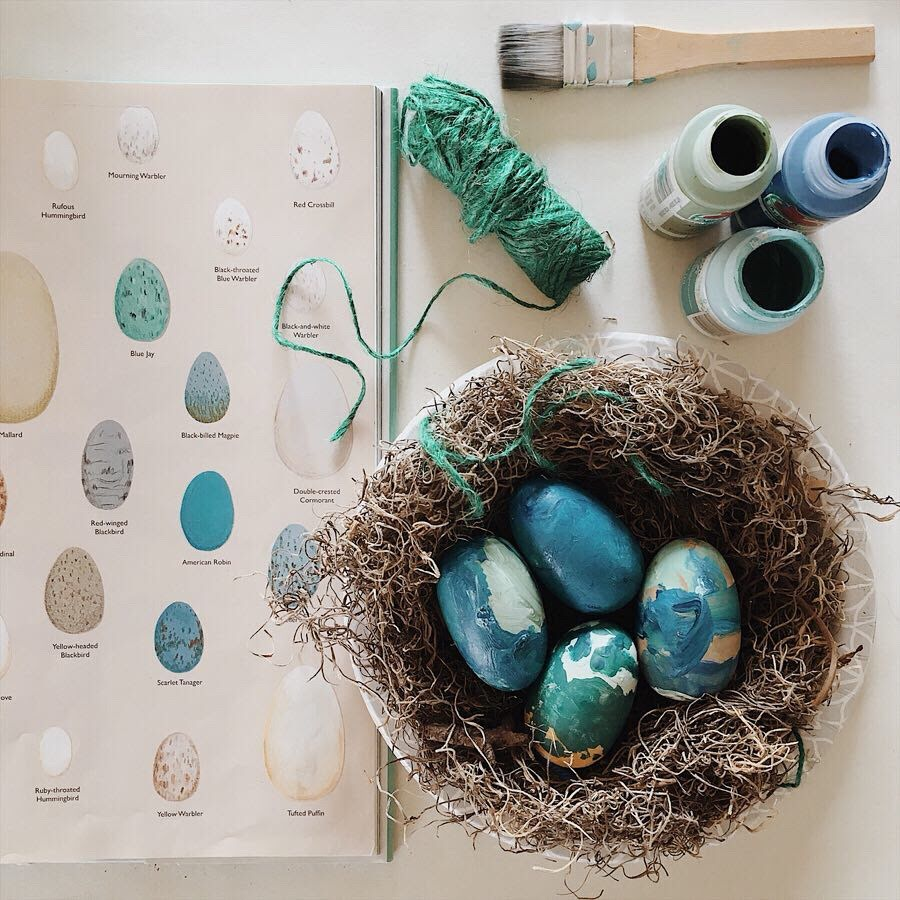 nesting bird spring study